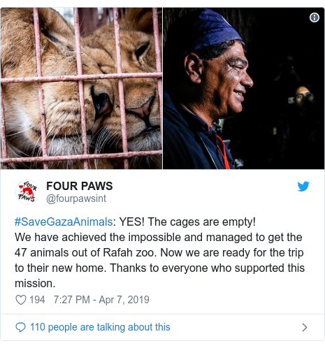 Twitter post by @fourpawsint: #SaveGazaAnimals  YES! The cages are empty!We have achieved the impossible and managed to get the 47 animals out of Rafah zoo. Now we are ready for the trip to their new home. Thanks to everyone who supported this mission.