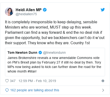 Twitter post by @heidiallen75: It is completely irresponsible to keep delaying, sensible Ministers who are worried, MUST step up this week. Parliament can find a way forward & end the no deal risk if given the opportunity, but we backbenchers can't do it w'out their support. They know who they are. Country 1st