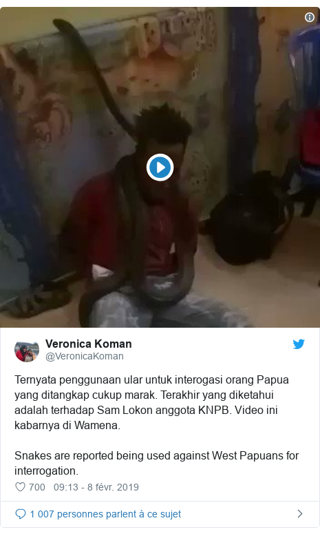 Twitter publication par @VeronicaKoman: Ternyata penggunaan ular untuk interogasi orang Papua yang ditangkap cukup marak. Terakhir yang diketahui adalah terhadap Sam Lokon anggota KNPB. Video ini kabarnya di Wamena.Snakes are reported being used against West Papuans for interrogation.