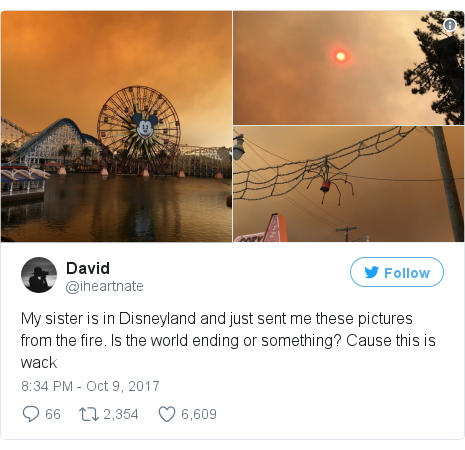 Twitter post by @iheartnate: My sister is in Disneyland and just sent me these pictures from the fire. Is the world ending or something? Cause this is wack pic.twitter.com/uRut0up3Yr