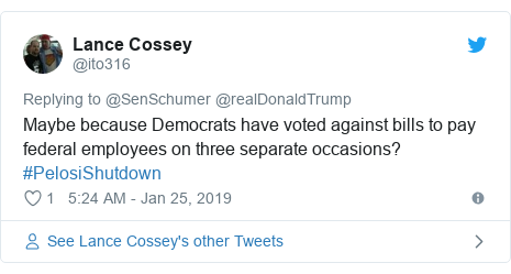 Twitter post by @ito316: Maybe because Democrats have voted against bills to pay federal employees on three separate occasions? #PelosiShutdown