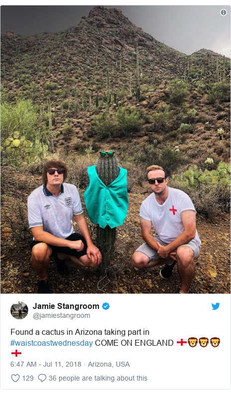 Twitter post by @jamiestangroom: Found a cactus in Arizona taking part in #waistcoastwednesday COME ON ENGLAND 🏴🦁🦁🦁🏴