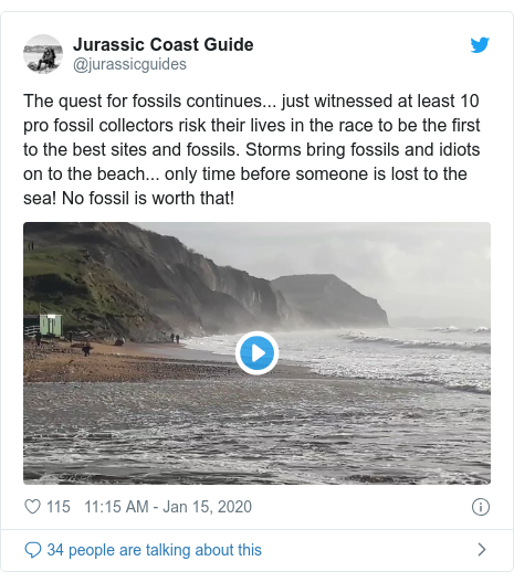 Twitter post by @jurassicguides: The quest for fossils continues... just witnessed at least 10 pro fossil collectors risk their lives in the race to be the first to the best sites and fossils. Storms bring fossils and idiots on to the beach... only time before someone is lost to the sea! No fossil is worth that!
