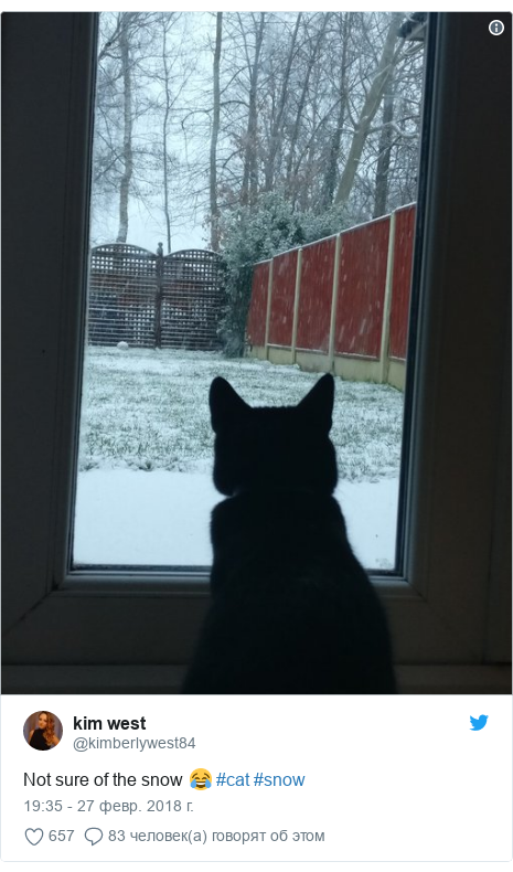 Twitter post by @kimberlywest84: Not sure of the snow 😂 #cat #snow