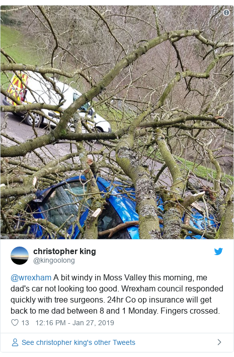 Twitter post by @kingoolong: @wrexham A bit windy in Moss Valley this morning, me dad's car not looking too good. Wrexham council responded quickly with tree surgeons. 24hr Co op insurance will get back to me dad between 8 and 1 Monday. Fingers crossed.
