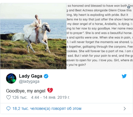 Twitter post by @ladygaga: Goodbye, my angel 💔