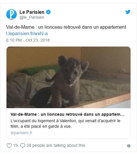 Twitter post by @le_Parisien: Val-de-Marne   un lionceau retrouvé dans un appartement