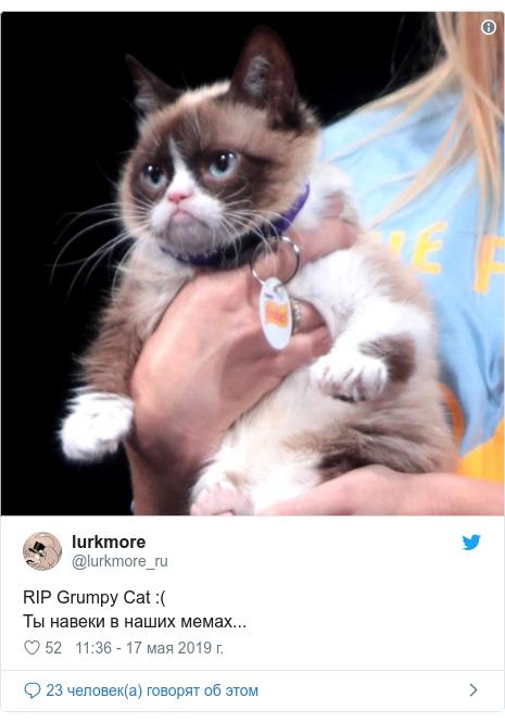 Twitter пост, автор: @lurkmore_ru: RIP Grumpy Cat  ( Ты навеки в наших мемах...