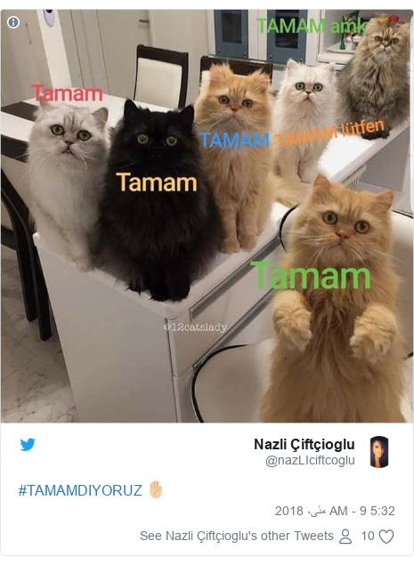 ٹوئٹر پوسٹس @nazLIciftcoglu کے حساب سے: #TAMAMDIYORUZ ✋🏼