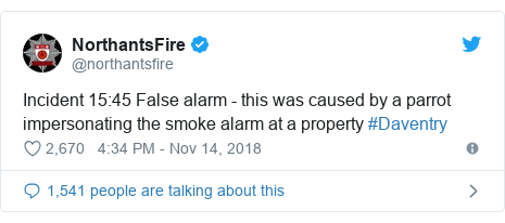 Twitter post by @northantsfire: Incident 15 45 False alarm - this was caused by a parrot impersonating the smoke alarm at a property #Daventry