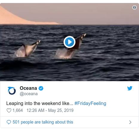 Ujumbe wa Twitter wa @oceana: Leaping into the weekend like... #FridayFeeling