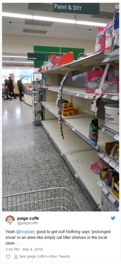 Twitter post by @paigecuffe: Yeah @nogbad, good to get out! Nothing says 'prolonged snow' in an area like empty cat litter shelves in the local store  ...