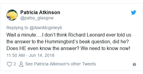 Twitter post by @patsy_glasgow: Wait a minute.....I don't think Richard Leonard ever told us the answer to the Hummingbird's beak question, did he? Does HE even know the answer? We need to know now!