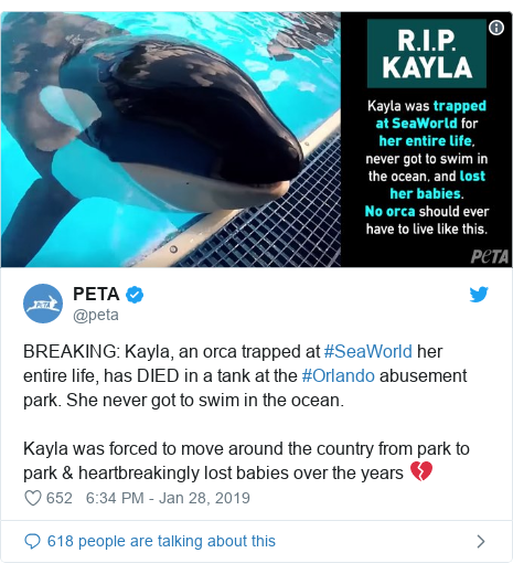 Twitter post by @peta: BREAKING  Kayla, an orca trapped at #SeaWorld her entire life, has DIED in a tank at the #Orlando abusement park. She never got to swim in the ocean. Kayla was forced to move around the country from park to park & heartbreakingly lost babies over the years 💔