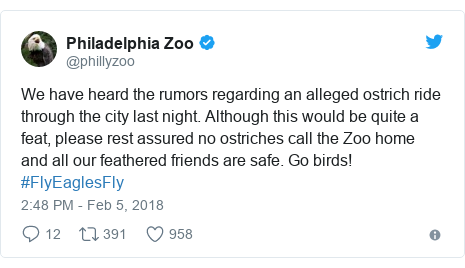 Twitter post by @phillyzoo: We have heard the rumors regarding an alleged ostrich ride through the city last night. Although this would be quite a feat, please rest assured no ostriches call the Zoo home and all our feathered friends are safe. Go birds! #FlyEaglesFly