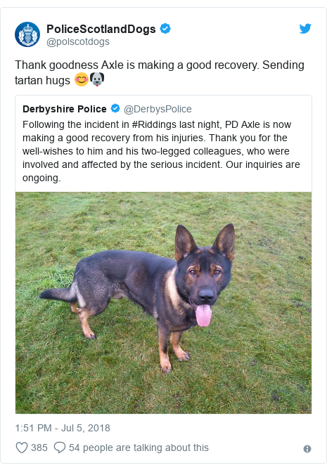 Twitter post by @polscotdogs: Thank goodness Axle is making a good recovery. Sending tartan hugs 😊🐶