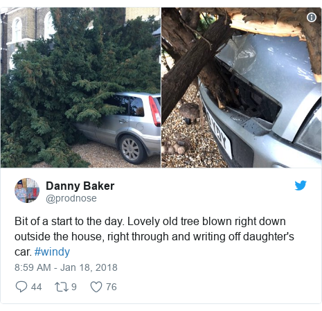 Twitter post by @prodnose: Bit of a start to the day. Lovely old tree blown right down outside the house, right through and writing off daughter's car. #windy
