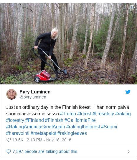 Twitter post by @pyryluminen: Just an ordinary day in the Finnish forest ~ Ihan normipäivä suomalaisessa metsässä #Trump #forest #firesafety #raking #forestry #Finland #Finnish #CaliforniaFire #RakingAmericaGreatAgain #rakingtheforest #Suomi #haravointi #metsäpalot #rakingleaves