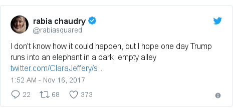 Twitter post by @rabiasquared: I don't know how it could happen, but I hope one day Trump runs into an elephant in a dark, empty alley
