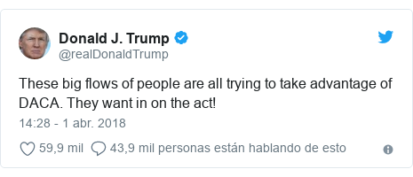 Publicación de Twitter por @realDonaldTrump: These big flows of people are all trying to take advantage of DACA. They want in on the act!