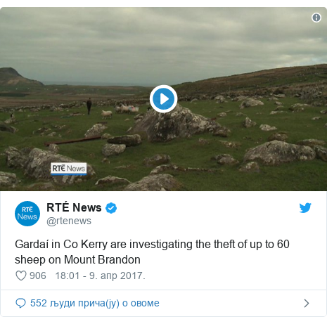 Twitter post by @rtenews: Gardaí in Co Kerry are investigating the theft of up to 60 sheep on Mount Brandon
