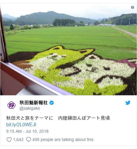 Twitter හි @sakigake කළ පළකිරීම: 秋田犬と旅をテーマに 内陸線田んぼアート見頃