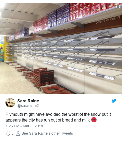 Twitter post by @sararaine2: Plymouth might have avoided the worst of the snow but it appears the city has run out of bread and milk 😡