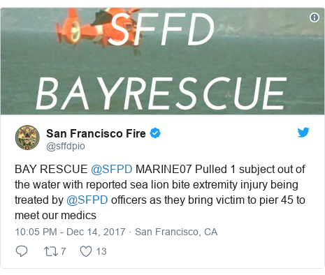 Twitter post by @sffdpio: BAY RESCUE @SFPD MARINE07 Pulled 1 subject out of the water with reported sea lion bite extremity injury being treated by @SFPD officers as they bring victim to pier 45 to meet our medics