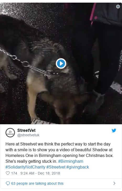 Twitter post by @streetvetuk: Here at Streetvet we think the perfect way to start the day with a smile is to show you a video of beautiful Shadow at Homeless One in Birmingham opening her Christmas box. She's really getting stuck in. #Birmingham #SolidarityNotCharity #Streetvet #givingback