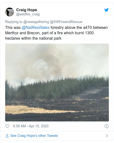 Twitter post by @wildfire_craig: This was @NatResWales forestry above the a470 between Merthyr and Brecon, part of a fire which burnt 1300 hectares within the national park