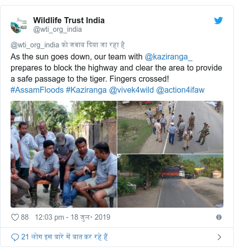 ट्विटर पोस्ट @wti_org_india: As the sun goes down, our team with @kaziranga_ prepares to block the highway and clear the area to provide a safe passage to the tiger. Fingers crossed! #AssamFloods #Kaziranga @vivek4wild @action4ifaw