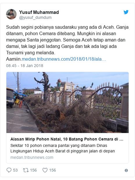 Twitter pesan oleh @yusuf_dumdum: Sudah segini pobianya saudaraku yang ada di Aceh. Ganja ditanam, pohon Cemara ditebang. Mungkin ini alasan mengapa Santa jenggotan. Semoga Aceh tetap aman dan damai, tak lagi jadi ladang Ganja dan tak ada lagi ada Tsunami yang melanda. Aamiin.