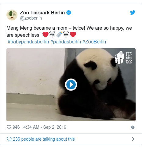 Twitter post by @zooberlin: Meng Meng became a mom – twice! We are so happy, we are speechless! ❤️🐼🍼🐼❤️ #babypandasberlin #pandasberlin #ZooBerlin
