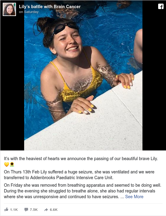 Facebook post by Lily's battle with Brain Cancer: It's with the heaviest of hearts we announce the passing of our beautiful brave Lily. 💛🌻  On Thurs 13th Feb Lily...