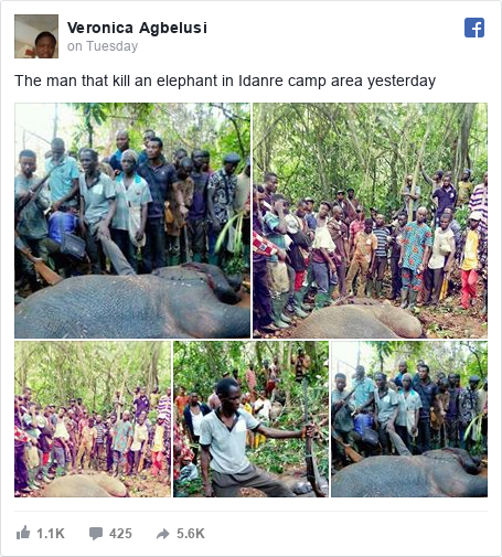 Facebook post by Veronica: The man that kill an elephant in Idanre  camp area yesterday