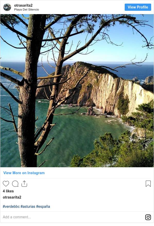 Publicación de Instagram por otrasarita2: #verdebbc  #asturias #españa