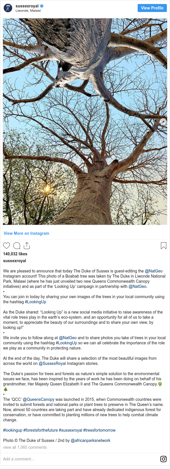 """Instagram post by sussexroyal: We are pleased to announce that today The Duke of Sussex is guest-editing the @NatGeo Instagram account! This photo of a Boabab tree was taken by The Duke in Liwonde National Park, Malawi (where he has just unveiled two new Queens Commonwealth Canopy initiatives) and as part of the 'Looking Up' campaign in partnership with @NatGeo. • You can join in today by sharing your own images of the trees in your local community using the hashtag #LookingUp  As the Duke shared  """"Looking Up"""" is a new social media initiative to raise awareness of the vital role trees play in the earth's eco-system, and an opportunity for all of us to take a moment, to appreciate the beauty of our surroundings and to share your own view, by looking up!"""" • We invite you to follow along at @NatGeo and to share photos you take of trees in your local community using the hashtag #LookingUp so we can all celebrate the importance of the role we play as a community in protecting nature.  At the end of the day, The Duke will share a selection of the most beautiful images from across the world on @SussexRoyal Instagram stories.  The Duke's passion for trees and forests as nature's simple solution to the environmental issues we face, has been inspired by the years of work he has been doing on behalf of his grandmother, Her Majesty Queen Elizabeth II and The Queens Commonwealth Canopy.🌳🌲 •  The 'QCC' @QueensCanopy was launched in 2015, when Commonwealth countries were invited to submit forests and national parks or plant trees to preserve in The Queen's name. Now, almost 50 countries are taking part and have already dedicated indigenous forest for conservation, or have committed to planting millions of new trees to help combat climate change.  #lookingup #forestsforthefuture #sussexroyal #treesfortomorrow  Photo © The Duke of Sussex / 2nd by @africanparksnetwork"""