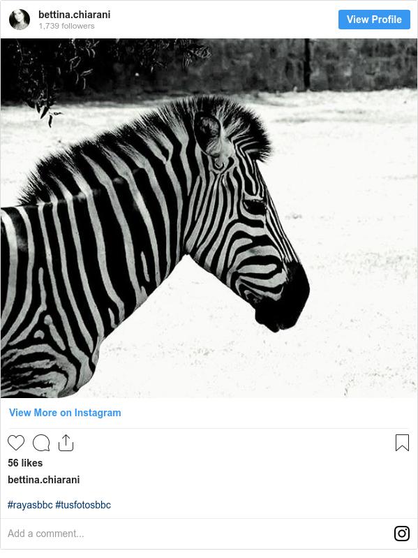 Publicación de Instagram por bettina.chiarani: #rayasbbc #tusfotosbbc