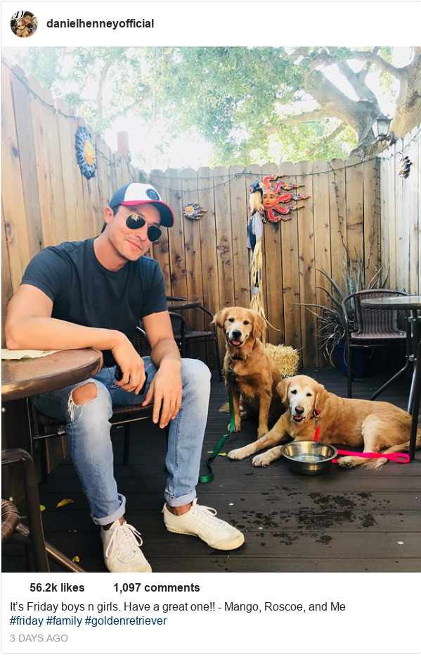 Instagram post by danielhenney: It's Friday boys n girls.  Have a great one!! - Mango, Roscoe, and Me #friday #family #goldenretriever