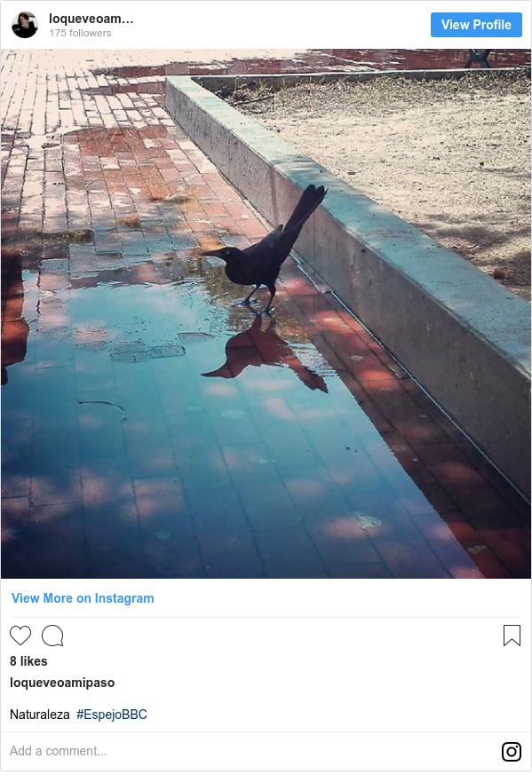 Publicación de Instagram por loqueveoamipaso: Naturaleza #EspejoBBC