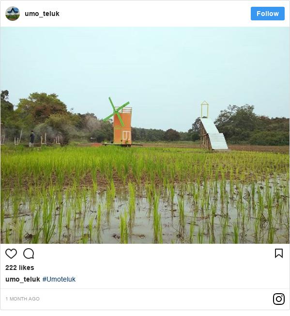 Instagram pesan oleh umo_teluk: #Umoteluk