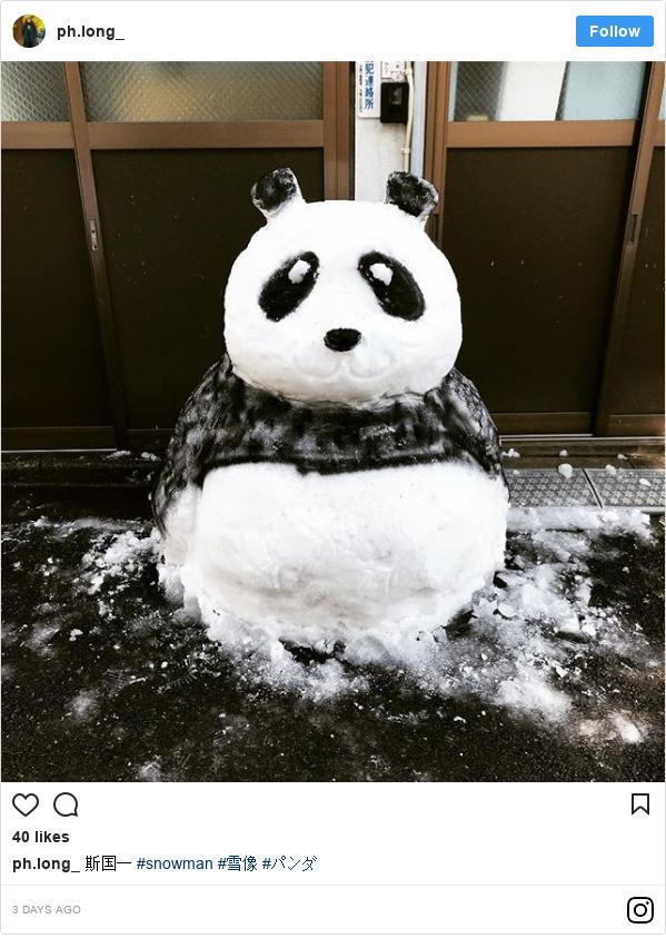 Instagram 用户名 ph.long_: 斯国一 #snowman #雪像 #パンダ