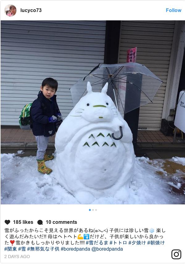 Instagram post by lucyco73: 雪がふったからこそ見える世界があるね(๑˃̵ᴗ˂̵) 子供には珍しい雪❄️ 楽しく遊んだみたいだ‼️ 母はヘトヘト💪⤵️だけど、子供が楽しいから良かった❣️雪かきもしっかりやりました‼️‼️ #雪だるま #トトロ #夕焼け #朝焼け #関東 #雪 #無邪気な子供 #boredpanda @boredpanda