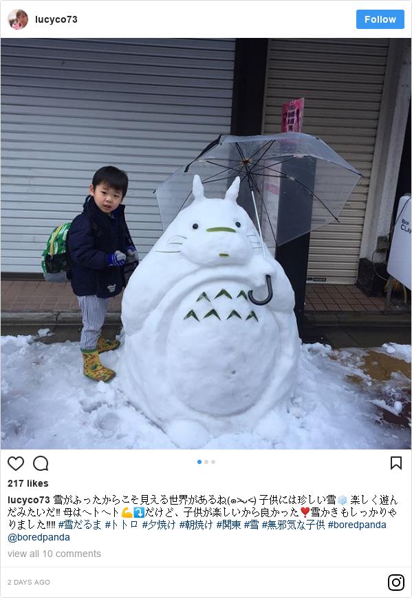 Instagram 用户名 lucyco73: 雪がふったからこそ見える世界があるね(๑˃̵ᴗ˂̵) 子供には珍しい雪❄️ 楽しく遊んだみたいだ‼️ 母はヘトヘト💪⤵️だけど、子供が楽しいから良かった❣️雪かきもしっかりやりました‼️‼️ #雪だるま #トトロ #夕焼け #朝焼け #関東 #雪 #無邪気な子供 #boredpanda @boredpanda