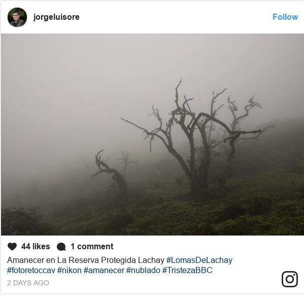 Publicación de Instagram por jorgeluisore: Amanecer en La Reserva Protegida Lachay #LomasDeLachay #fotoretoccav #nikon #amanecer #nublado #TristezaBBC