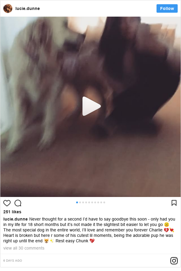 Instagram post by lucie.dunne: Never thought for a second I'd have to say goodbye this soon - only had you in my life for 18 short months but it's not made it the slightest bit easier to let you go ☹️ The most special dog in the entire world, I'll love and remember you forever Charlie 💔💘 Heart is broken but here r some of his cutest lil moments, being the adorable pup he was right up until the end 🐶✨ Rest easy Chunk 💖