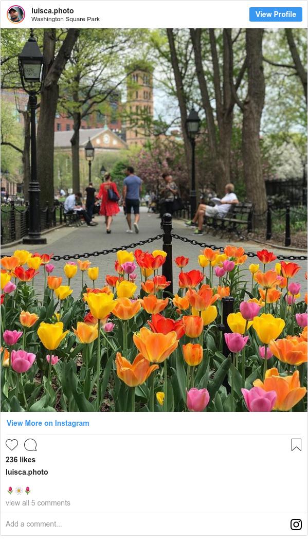 Publicación de Instagram por luisca.photo: 🌷🌼🌷