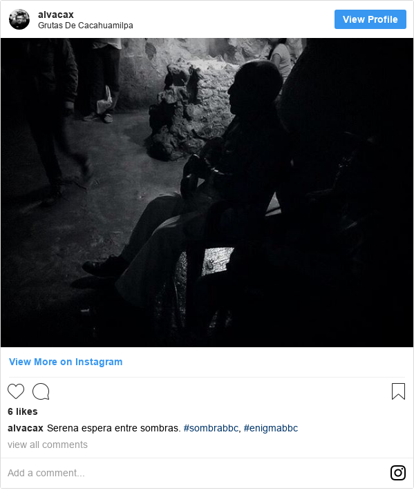 Publicación de Instagram por alvacax: Serena espera entre sombras. #sombrabbc, #enigmabbc