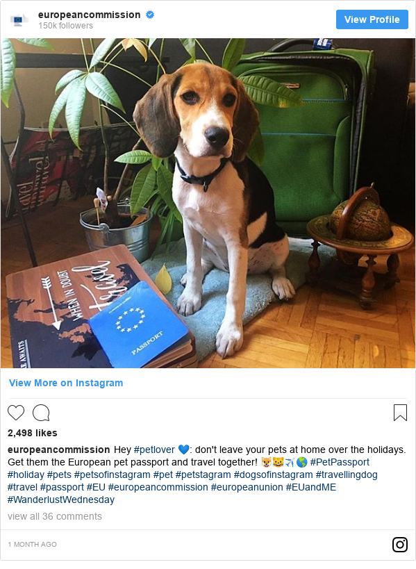 Instagram post by europeancommission: Hey #petlover 💙  don't leave your pets at home over the holidays. Get them the European pet passport and travel together! 🐶🐱✈️🌎 #PetPassport #holiday #pets #petsofinstagram #pet #petstagram #dogsofinstagram #travellingdog #travel #passport #EU #europeancommission #europeanunion #EUandME #WanderlustWednesday