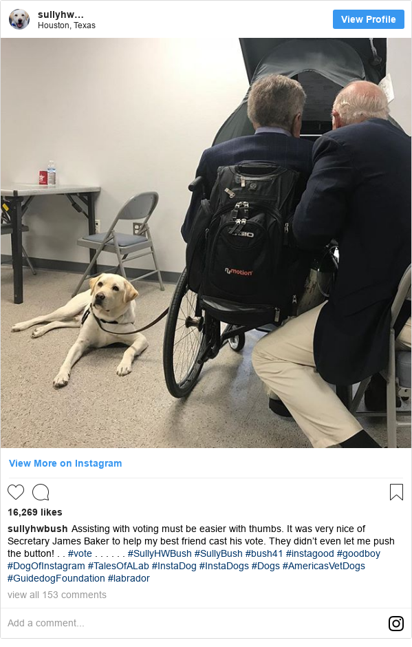 Ujumbe wa Instagram wa sullyhwbush: Assisting with voting must be easier with thumbs. It was very nice of Secretary James Baker to help my best friend cast his vote. They didn't even let me push the button! . . #vote . . . . . . #SullyHWBush #SullyBush #bush41 #instagood #goodboy #DogOfInstagram #TalesOfALab #InstaDog #InstaDogs #Dogs #AmericasVetDogs #GuidedogFoundation #labrador